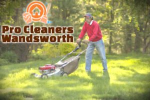 lawn-mowing-wandsworth