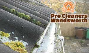 gutter-cleaning-services-wandsworth